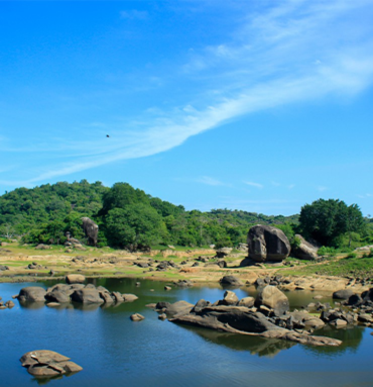 Tanks and greens in Batticaloa | Gateway to East