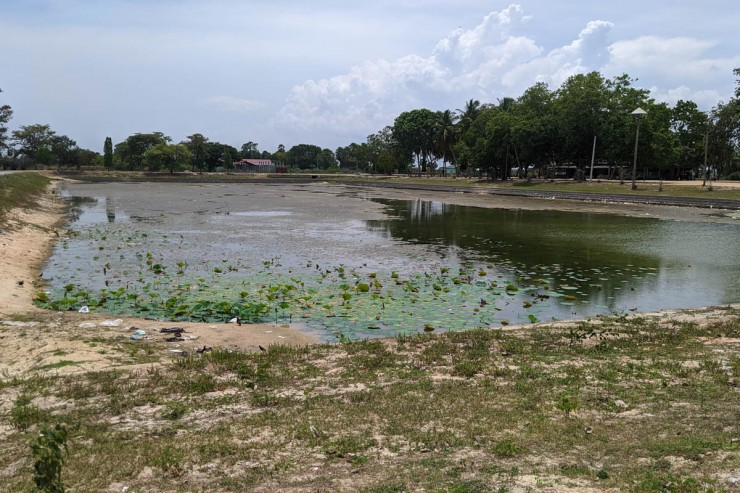 Places likely to spot brackish water crocs | Gateway to East